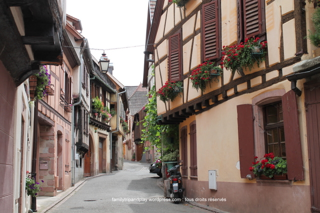alsace-ribeauville